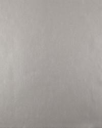 Oasis Wallpaper - Dark Platinum Metallics by