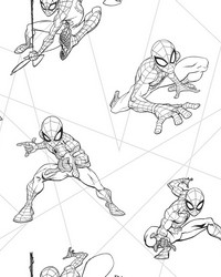 Spider-Man Fracture Wallpaper Black Gray by