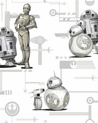 Star Wars: The Rise of Skywalker  Droids! Wallpaper Black White by