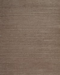 Plain Sisals Wallpaper  Taupe by