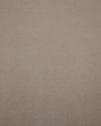 Habitat Wallpaper  Beige by