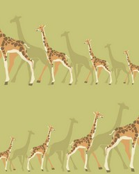 Giraffes                                           by