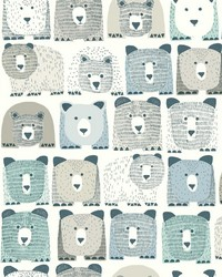 Bears Sidewall                                     by