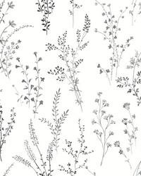 Wildflower Sprigs Wallpaper Black White by