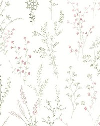 Wildflower Sprigs Wallpaper Pink Green Gray by