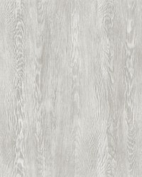 Quarter Sawn Wood Wallpaper Gray by