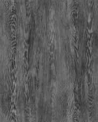 Quarter Sawn Wood Wallpaper Black by