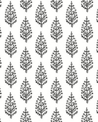 Paisley On Calico Wallpaper Black White by