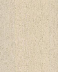 Rugged Bark Wallpaper Off-White by