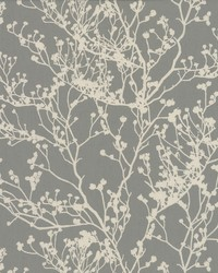 Budding Branch Silhouette Wallpaper Brown by