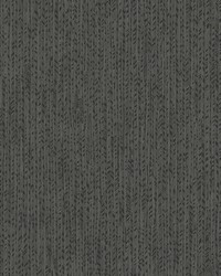 Feather Fletch Wallpaper Black by