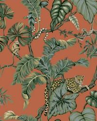Jungle Cat Wallpaper Orange by