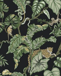 Jungle Cat Wallpaper Black by