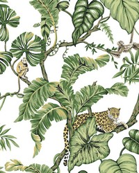 Jungle Cat Wallpaper White by