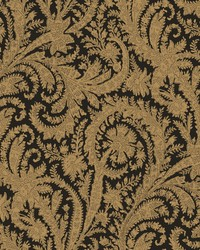 Archive Paisley Wallpaper Black by
