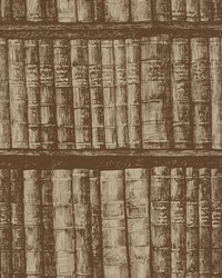 Library Bookshelf Wallpaper Brown by