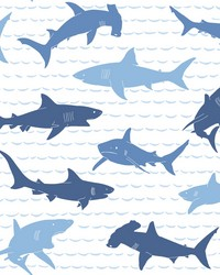 Shark Charades Wallpaper Blues by