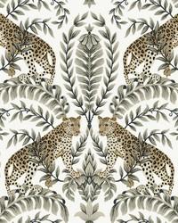 Jungle Leopard Wallpaper White Black by