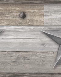 Pallet Star Border  Silver by
