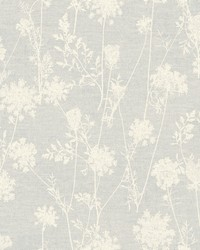 Queen Annes Lace Wallpaper  White Off Whites by