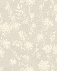 Queen Annes Lace Wallpaper  Browns by