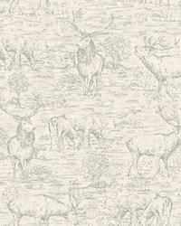 Stag Toile Wallpaper  White Off Whites by
