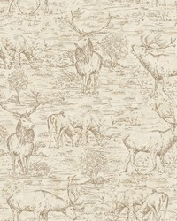 Stag Toile Wallpaper  Browns by