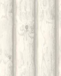 Mountain Logs Wallpaper  White Off Whites by