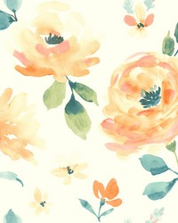Watercolor Blooms Wallpaper Oranges Blues Greens Yellows by