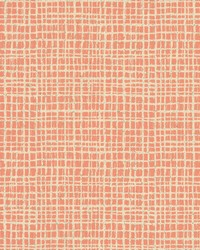 Tarlatan Wallpaper - Pinks Pinks by