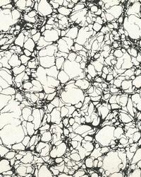 Calacatta Marble Wallpaper - White White Off Whites by