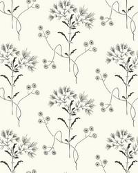 Wildflower  Black on White by
