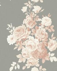 Tea Rose  Blush Grey by