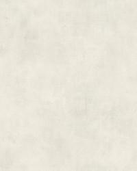 Plaster Finish  Blanc De Blanc by