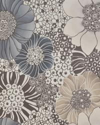 Anemones Wallpaper  Browns by