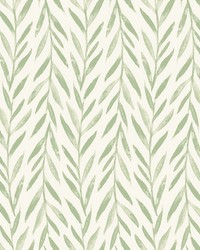 Willow Wallpaper Green by