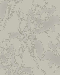 Botanical Silhouette Wallpaper Taupe by