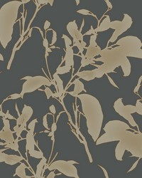 Botanical Silhouette Wallpaper Black Copper by