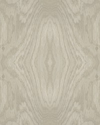Driftwood Grain Wallpaper Taupe by