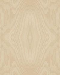 Driftwood Grain Wallpaper Blonde Wood by