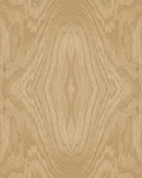 Driftwood Grain Wallpaper Honey Wood by