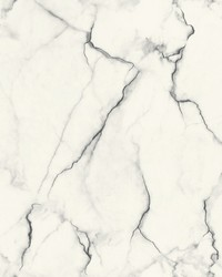 Gilded Marble Wallpaper Black White by