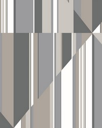 Pinwheel Stripe Mural Gray by