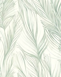 Peaceful Plume Wallpaper Light Blue by