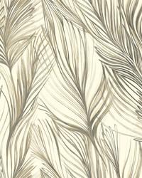 Peaceful Plume Wallpaper Dark Grey by