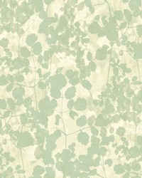 Pressed Leaves Wallpaper Green by