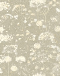 Botanical Fantasy Wallpaper Light Grey by
