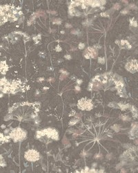 Botanical Fantasy Wallpaper Dark Grey by