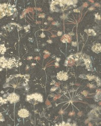 Botanical Fantasy Wallpaper Black by