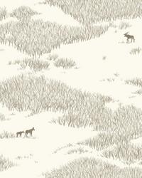 Wild Tundra Wallpaper White Off Whites by